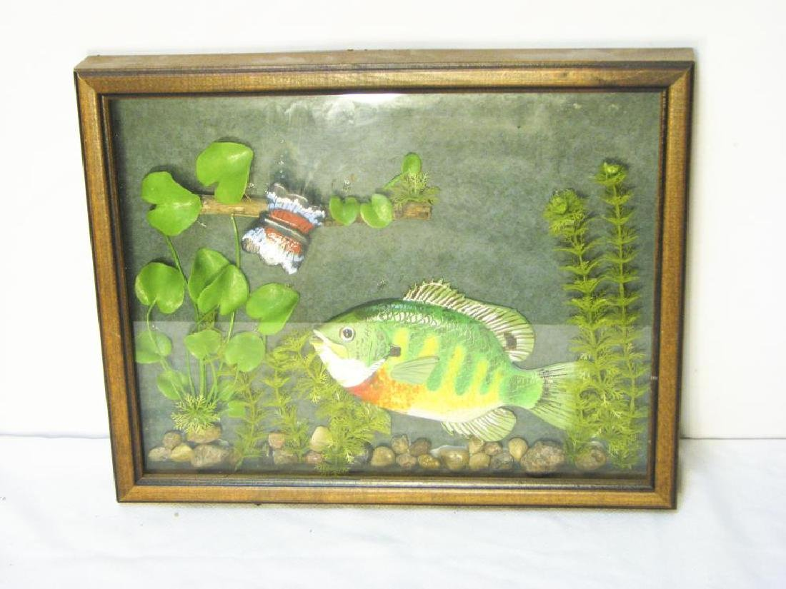 9 Fishing & Hunting Collectible Pictures - 3