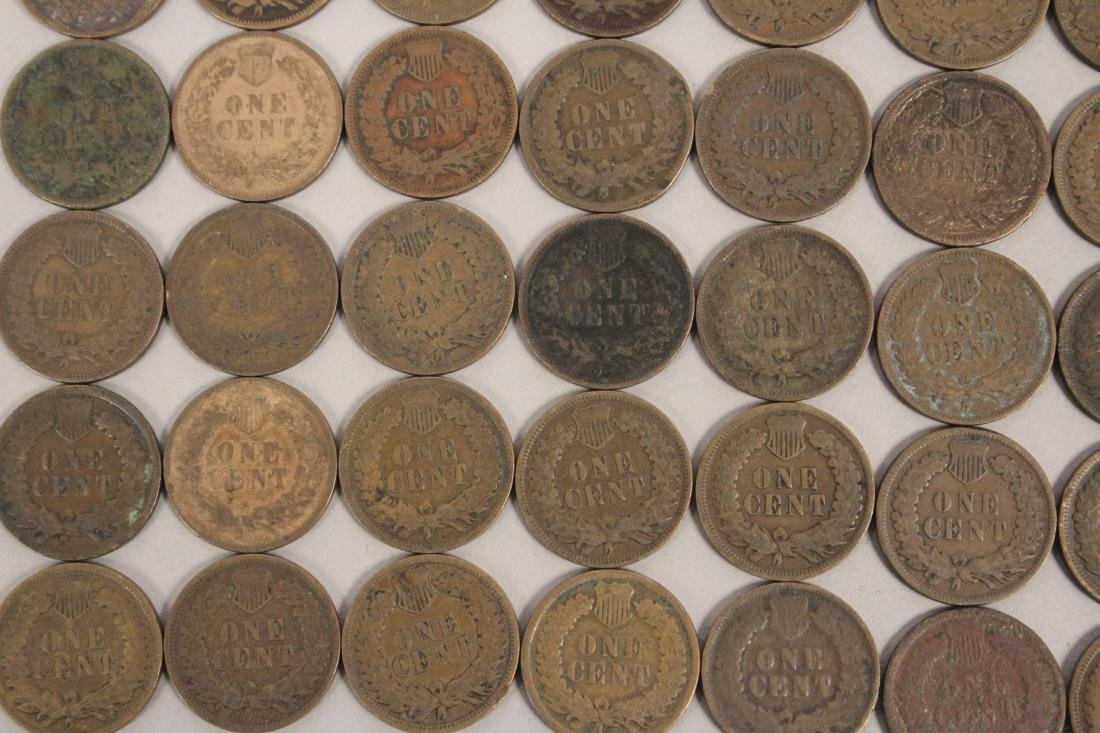 50 Indian Head Cent Pennies - 6