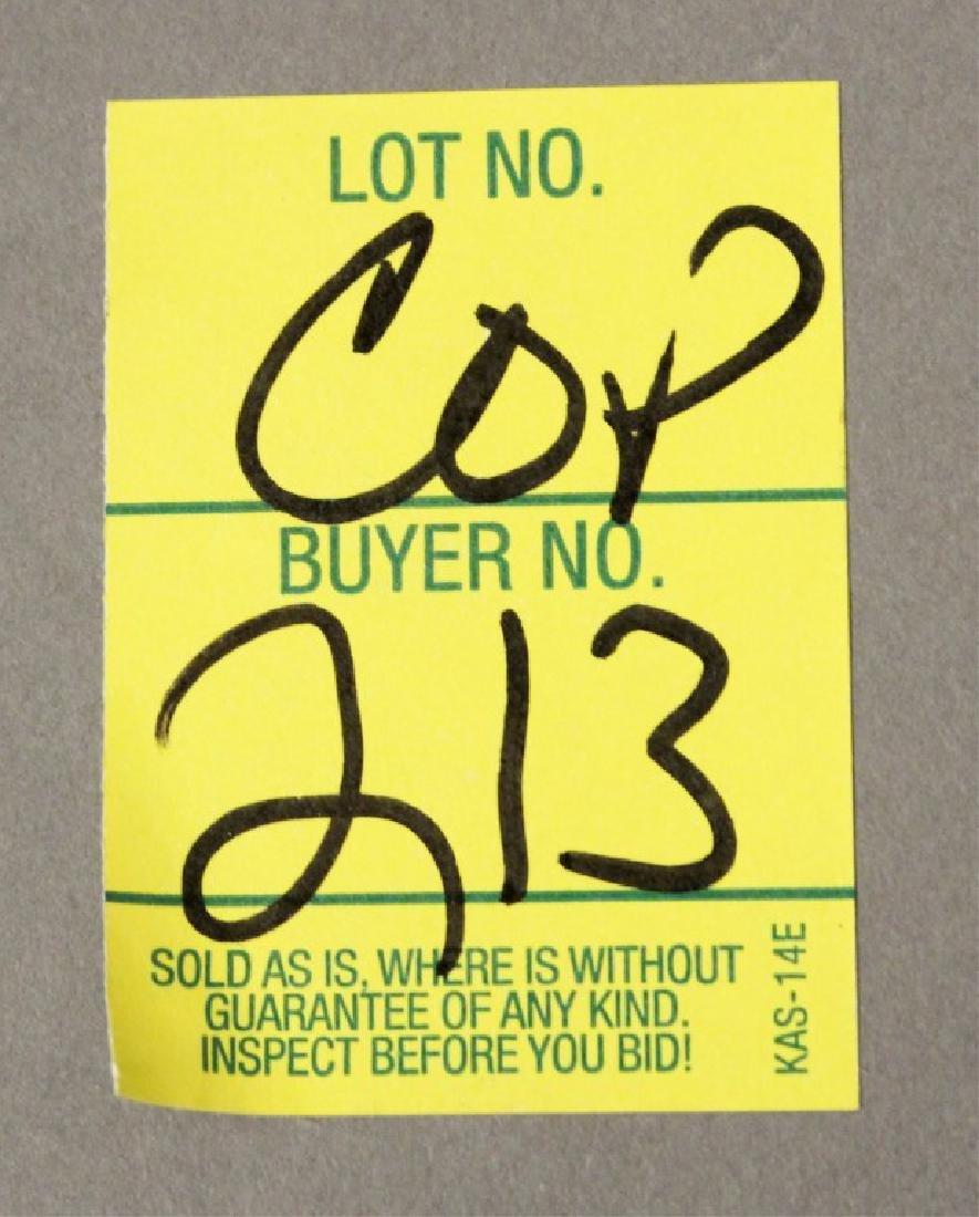 32 pc Garment Care Closet Organizer - 10