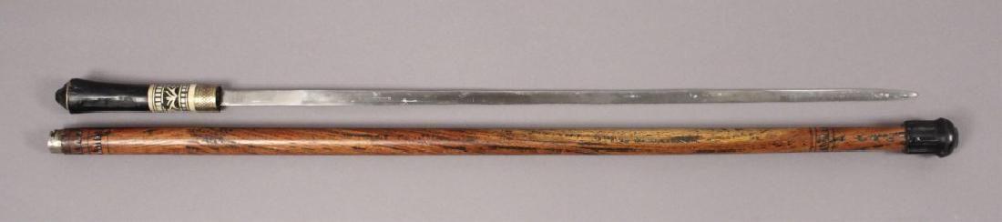 Walking Stick with Sword & Dart Blower Knife Stick