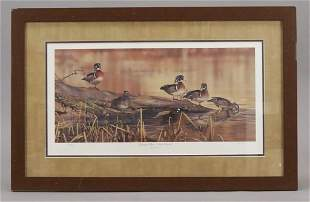 Scot Storm Resting Place Wood Ducks Framed Print