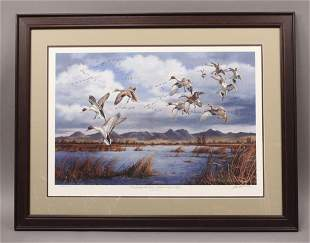 Water Fowling Pintails at Sutter Buttes Art Print