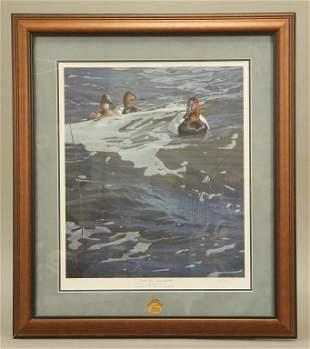 Daniel Smith On the Rise Canvasbacks Art Print