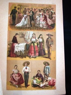 """The Republic of Mexico in 1876"" book"
