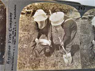 6 Antique occupational mining stereoviews