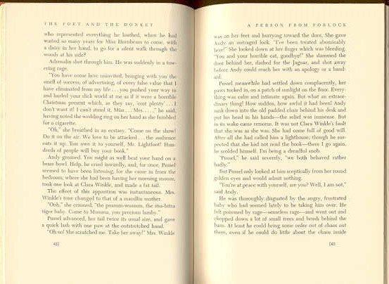 Sarton, Poet and the Donkey 1st Ed 1969 Martin ill. - 5
