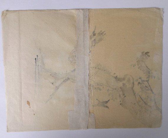 Kazan Watanabe, Sparrowhawk, Woodblock Print 1911 - 5