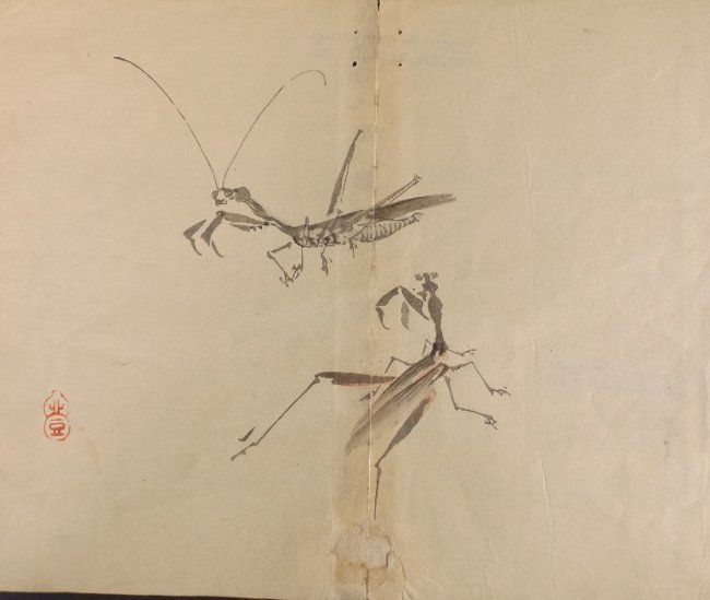 Kazan Watanabe, Mantis, antique woodblock print 1911