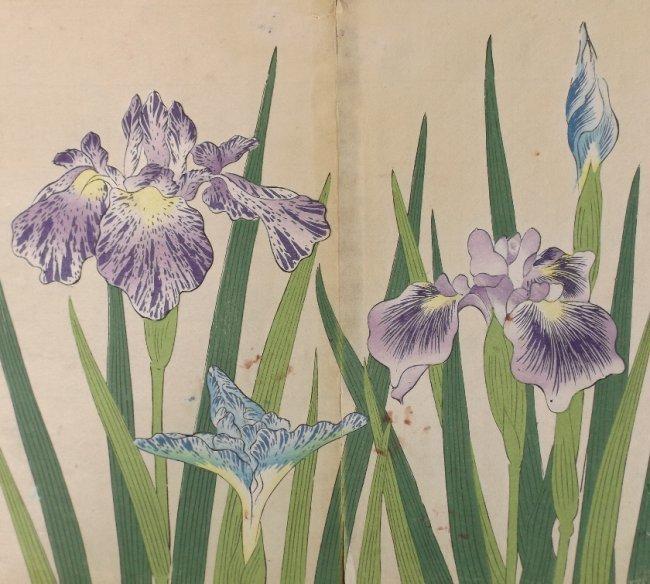 Sakai Hoitsu, Iris Flowers, 1st print woodblock 1907-08