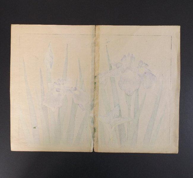 Sakai Hoitsu, Iris Flowers, 1st print woodblock 1907-08 - 4