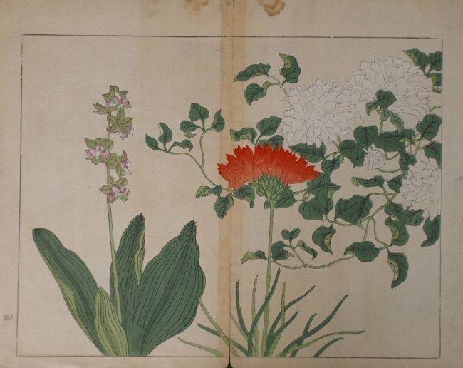 Sakai Hoitsu, Red & White Flower, 1st print 1907-08