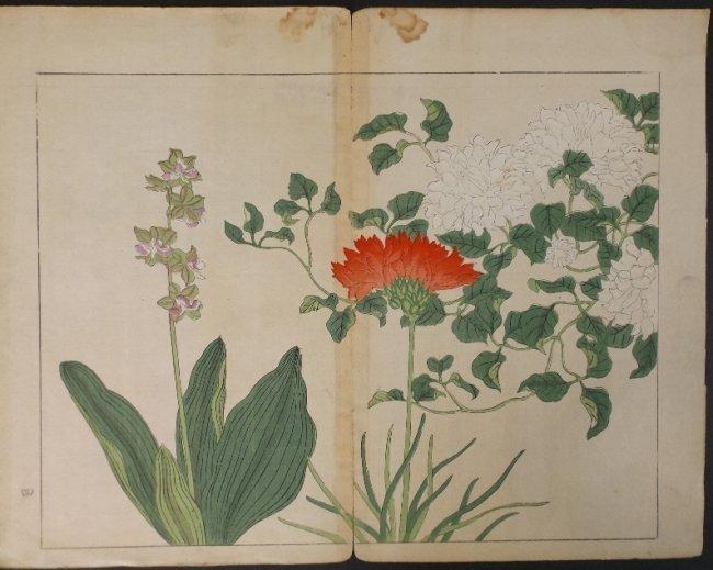 Sakai Hoitsu, Red & White Flower, 1st print 1907-08 - 2