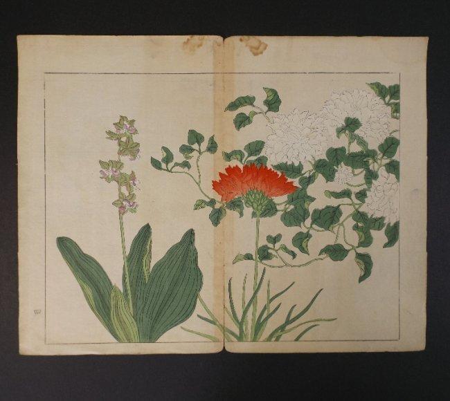 Sakai Hoitsu, Red & White Flower, 1st print 1907-08 - 3