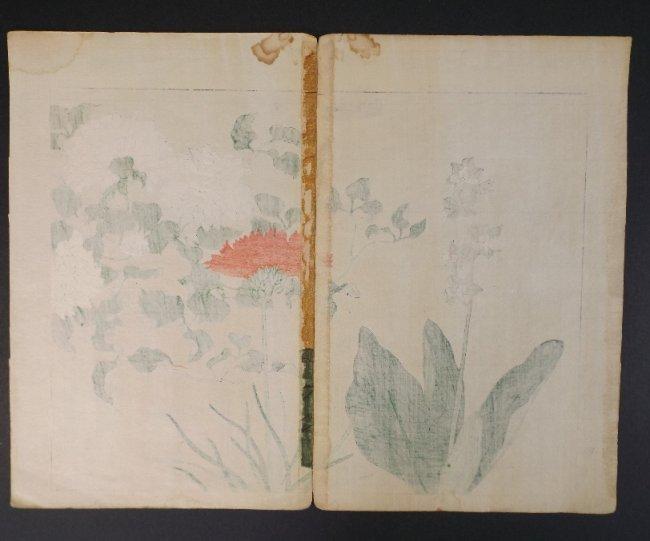 Sakai Hoitsu, Red & White Flower, 1st print 1907-08 - 4