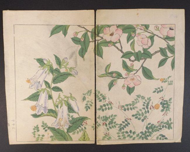 Sakai Hoitsu, Bell Flowers, 1st woodblock print 1907-08
