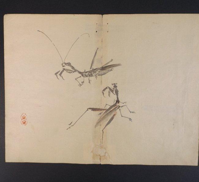 Kazan Watanabe, Praying Mantis woodblock 1stPrint 1911
