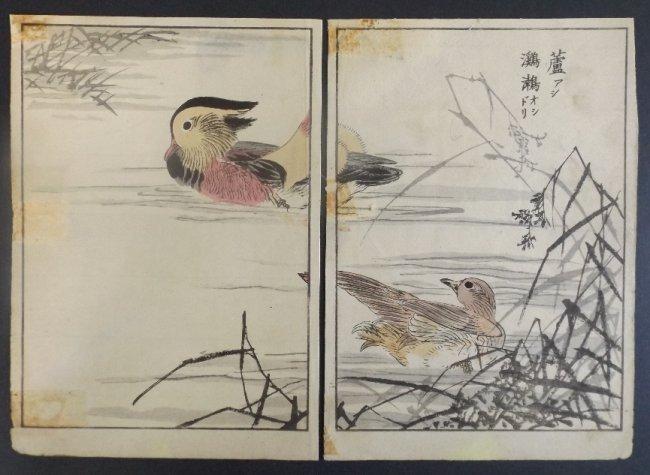 Yukoku Matsui, Common Red, Mandarin Duck 1stPrint 1901