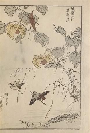 Yukoku Matsui, Japanese Lantern, Ringed Plover 1901