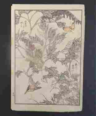 Yukoku Matsui, Bleeding-heart Kingfisher 1st Print 1901