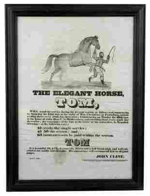 """""""The Elegant Horse, Tom"""" Handsome Equestrian Broadside"""