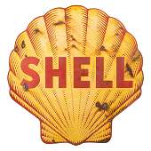 Shell Pecten Sign Sharks Tooth