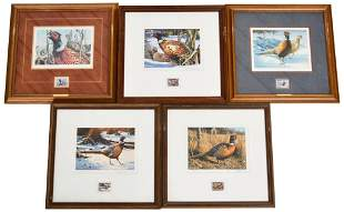 Lot Of 5 Minneapolis Pheasant Stamp Framed Art Work