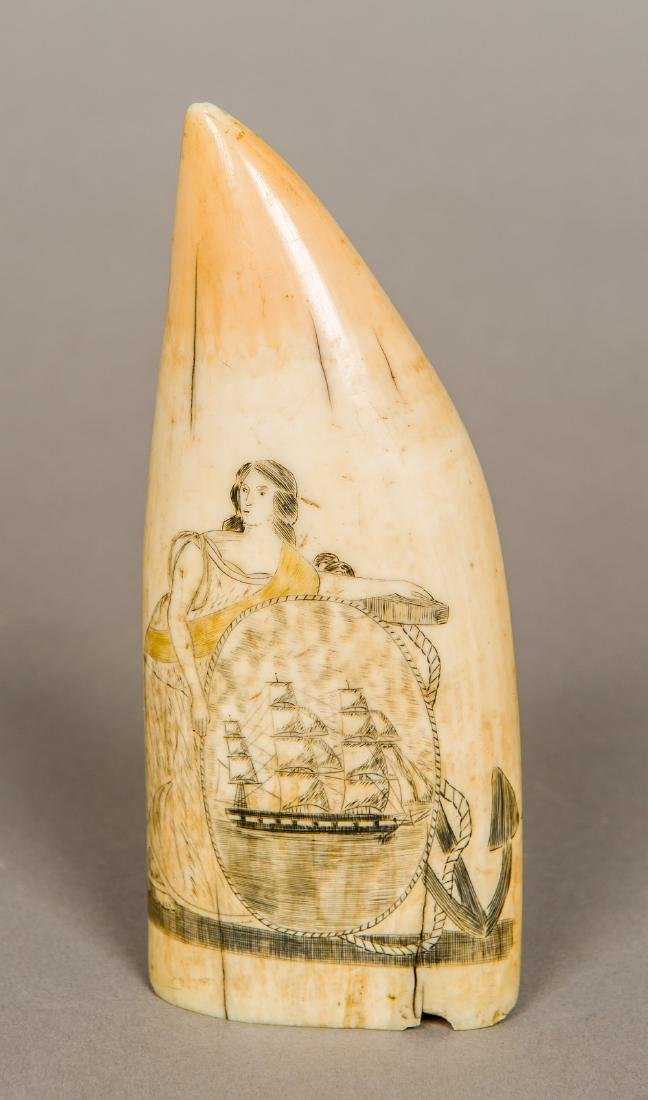 A 19th century polychrome scrimshaw whales tooth One - 2