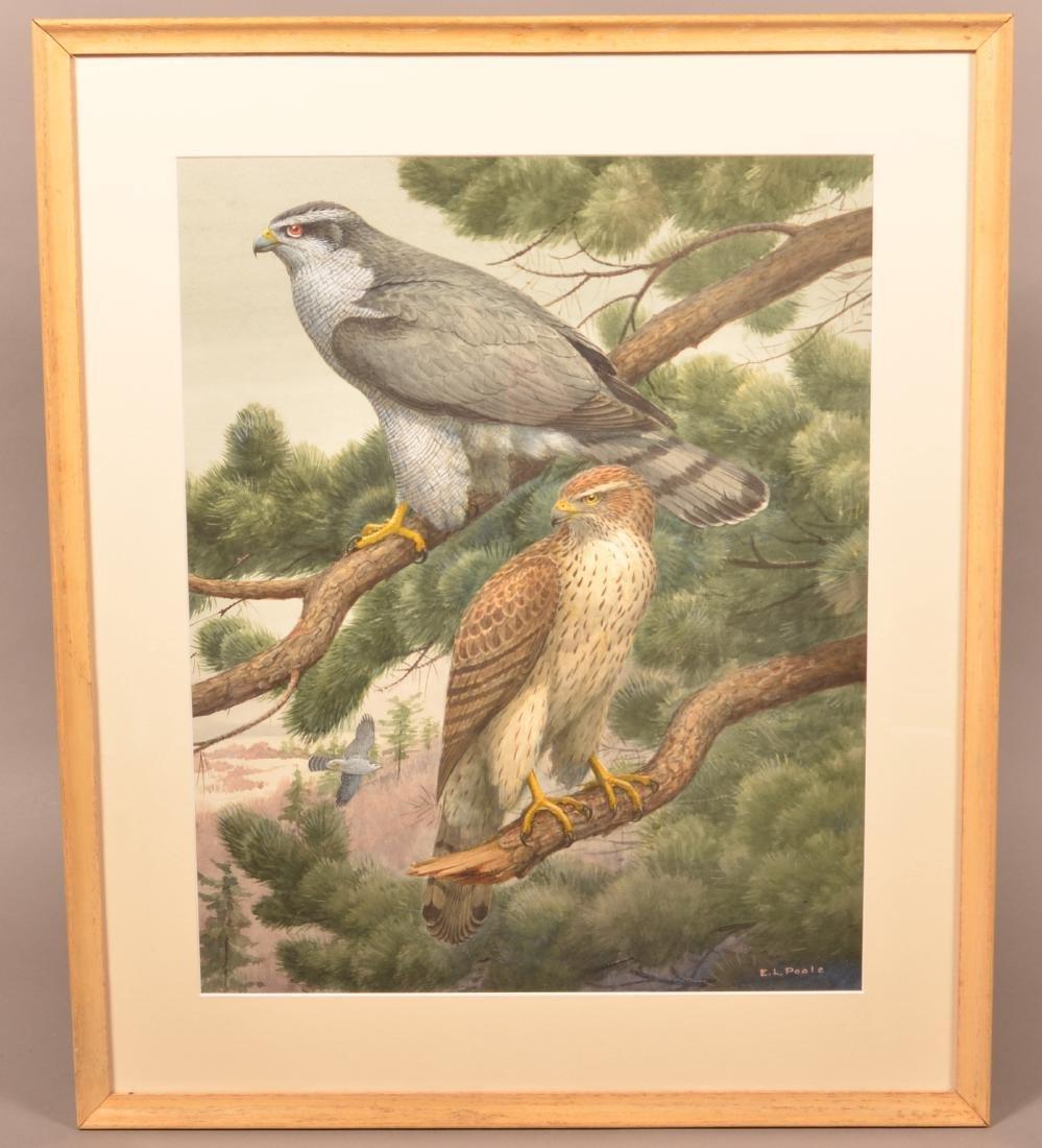 "Illustrator Art Watercolor Painting Signed ""E.L."