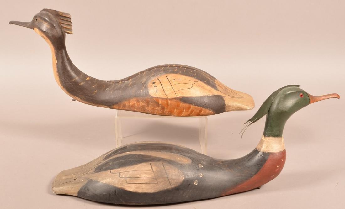 Pair of Carved Merganser Duck Decoys. - 2