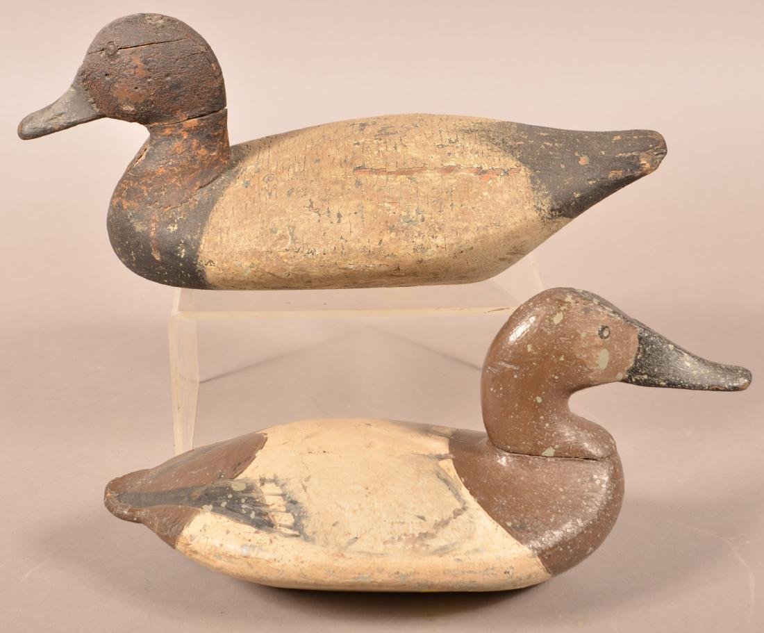 Two Carved Canvasback Drake Decoys. - 2