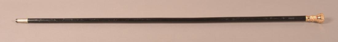 J.B Chase 1883 Victorian Presentation Cane - 4