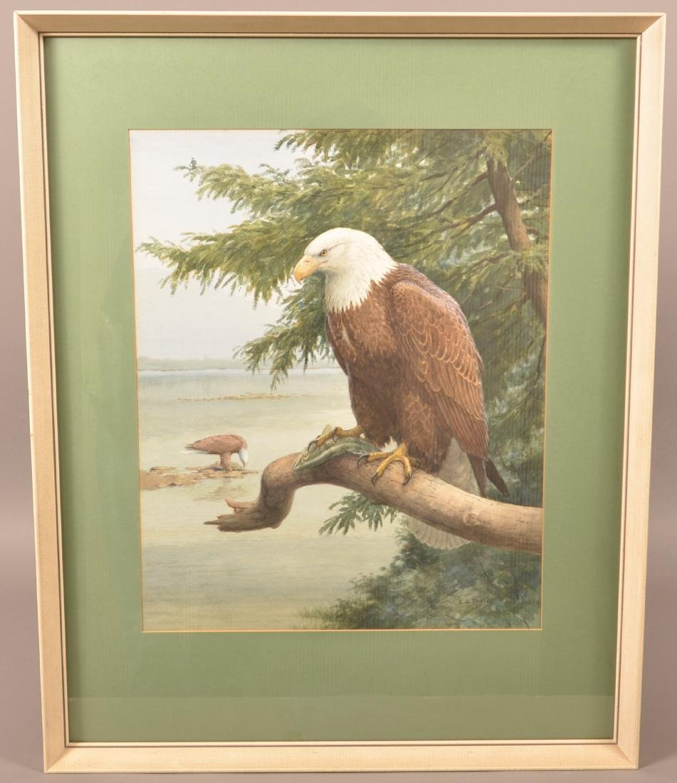 Earl L. Poole Watercolor Painting Bald Eagle. - 2