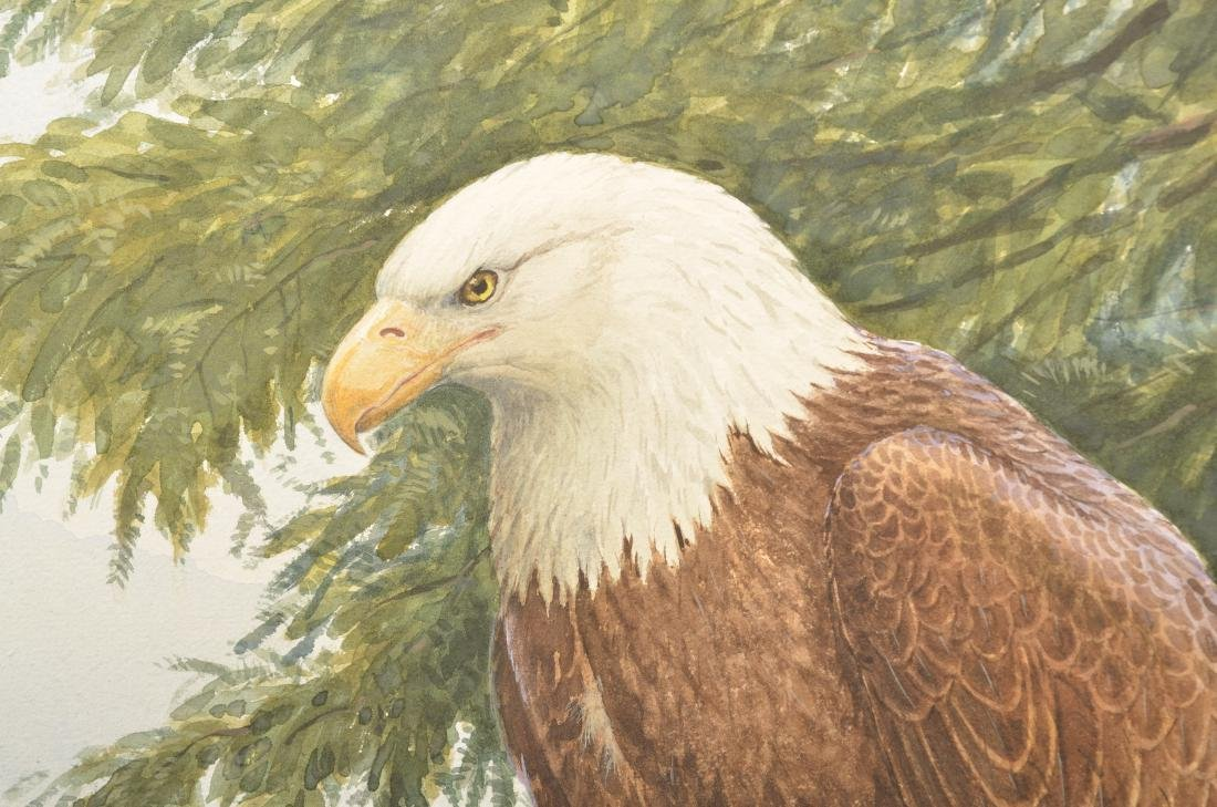 Earl L. Poole Watercolor Painting Bald Eagle. - 4
