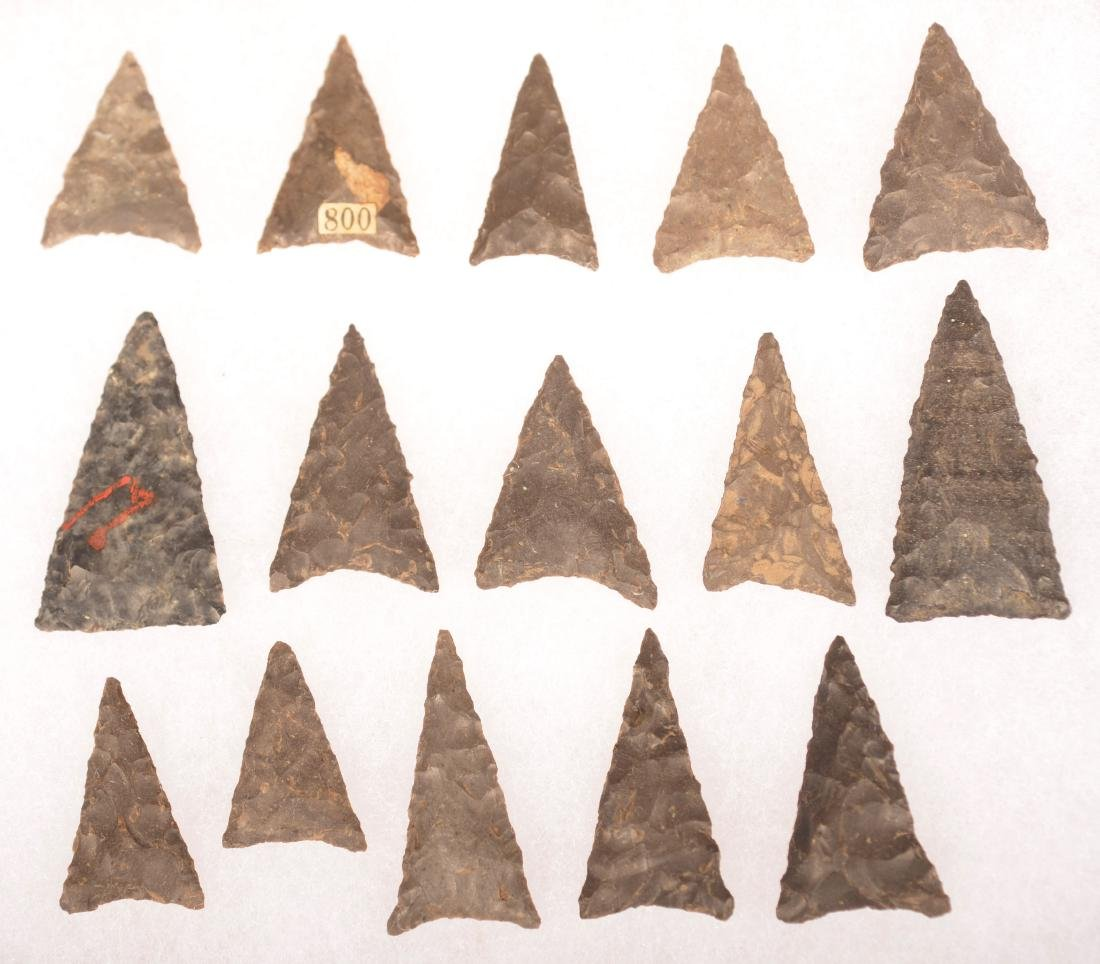 Select Collection of 15 Triangular Arrow Points from