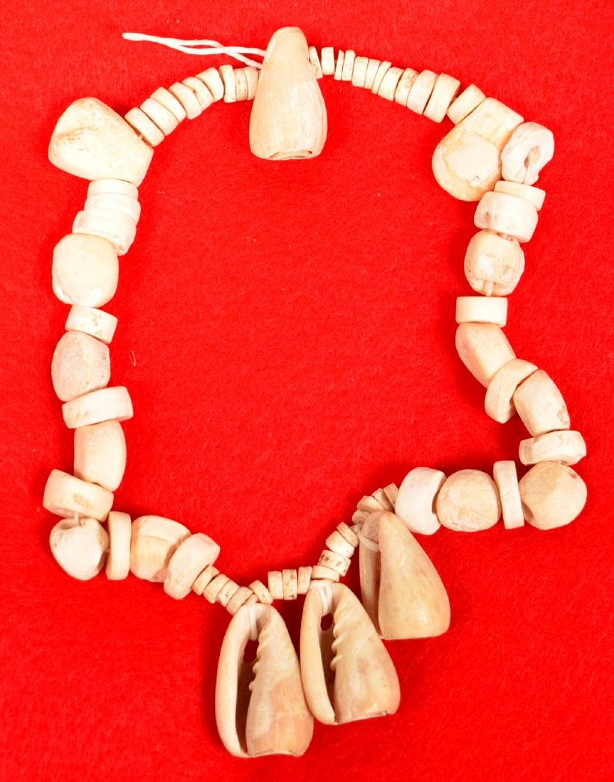 Group of Excavated Shell Beads