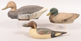 Decoy Lot Of (3): Padco Factory Pintail Drake-all