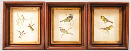 Three Matching Victorian Walnut Deep Molded Picture