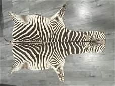 """African Large Zebra Rug 95"""" Long"""