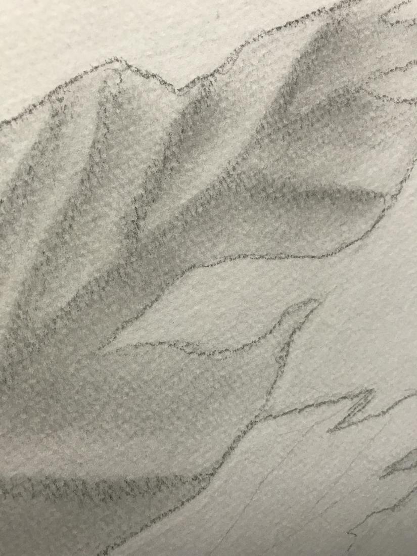 Drew Davis Original Pencil Study of Nude Woman with - 6