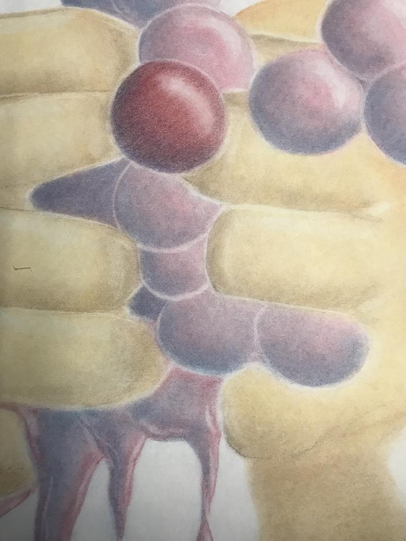 Drew Davis Original Study of Hands Squeezing Red Grapes - 5