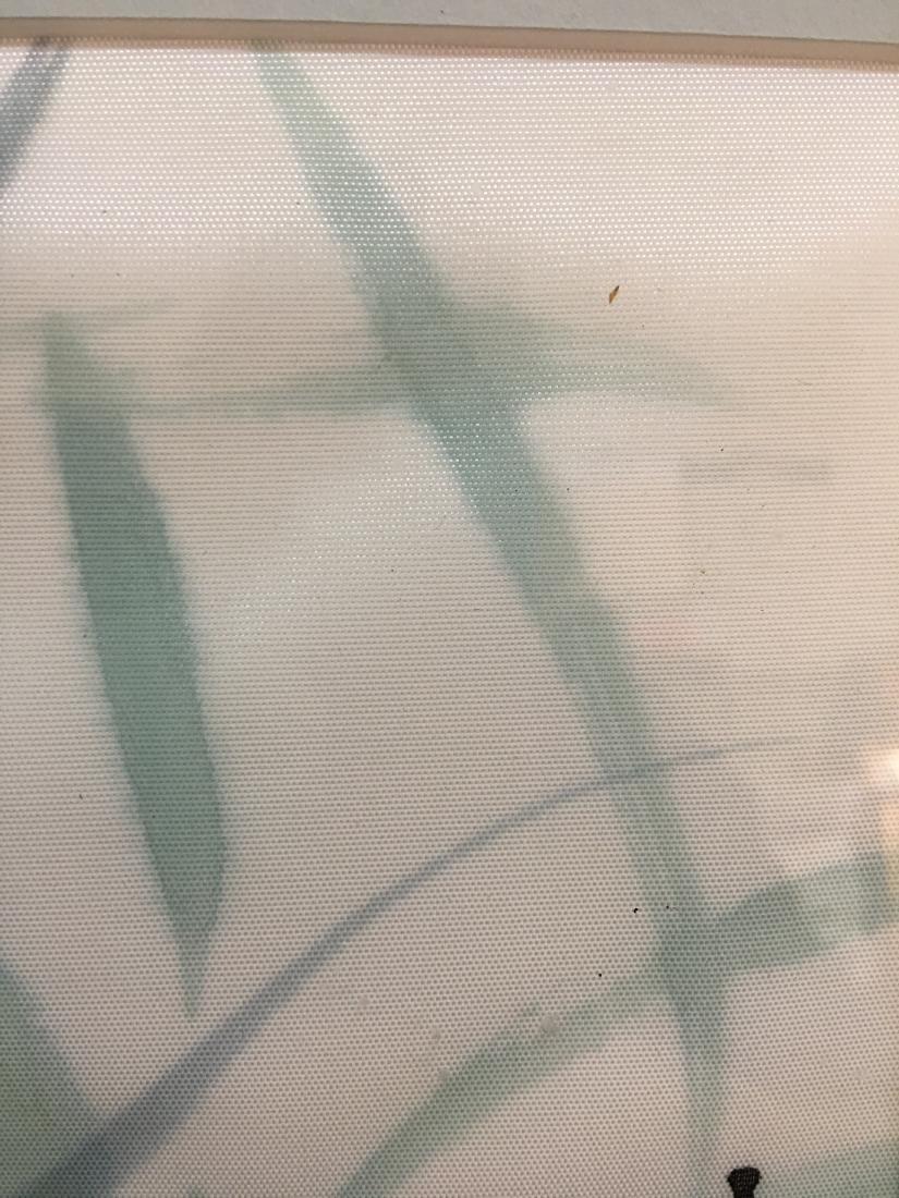 Original Signed Framed Chop Japanese Art Angelfish - 5