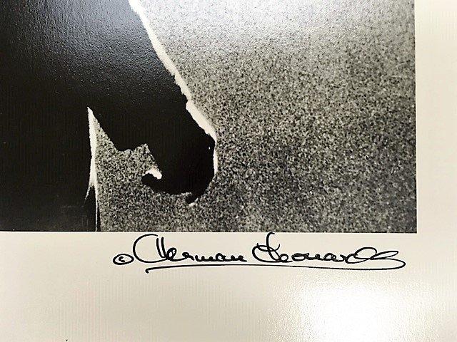 Herman Leonard (American, 1923-2010) - 4