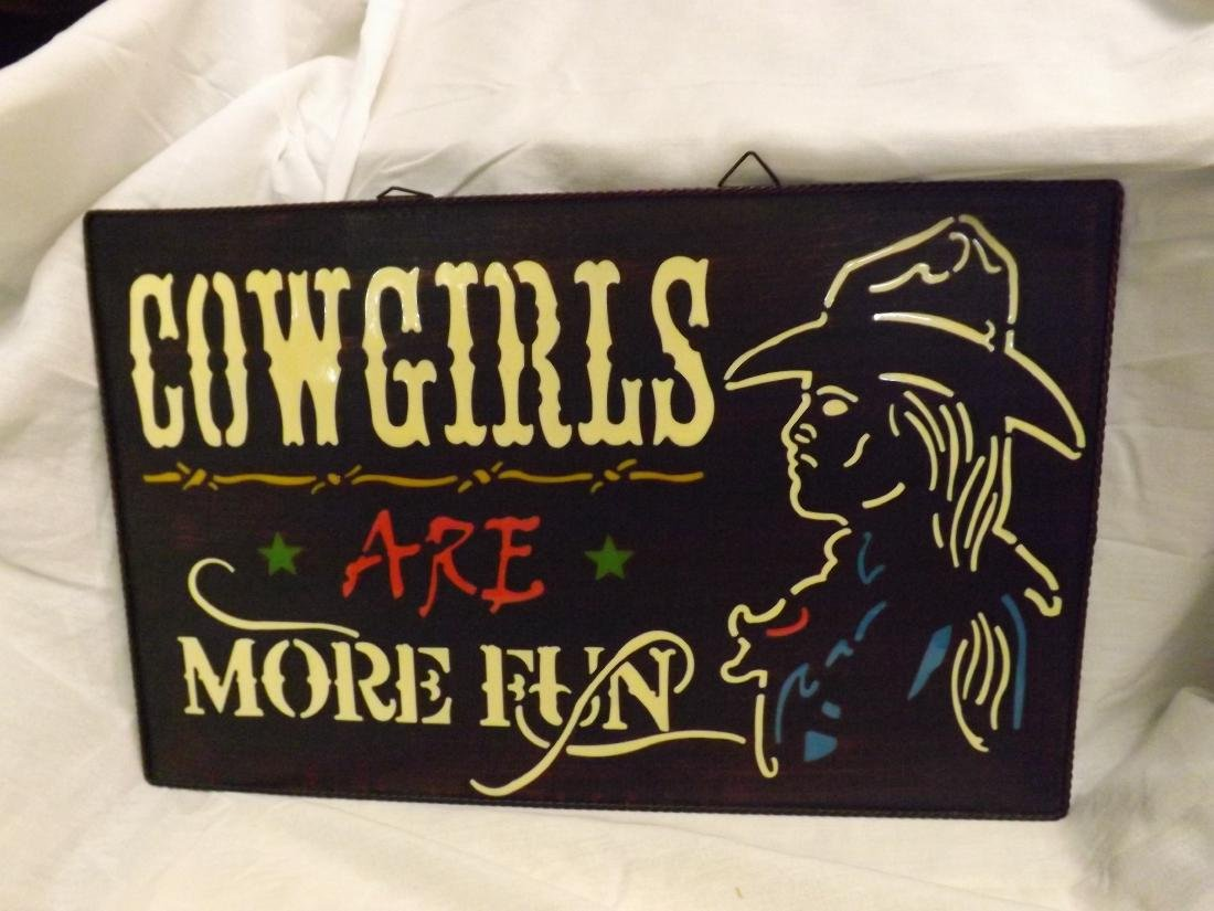 COWGIRLS ARE MORE FUN METAL & ACRYLIC SIGN