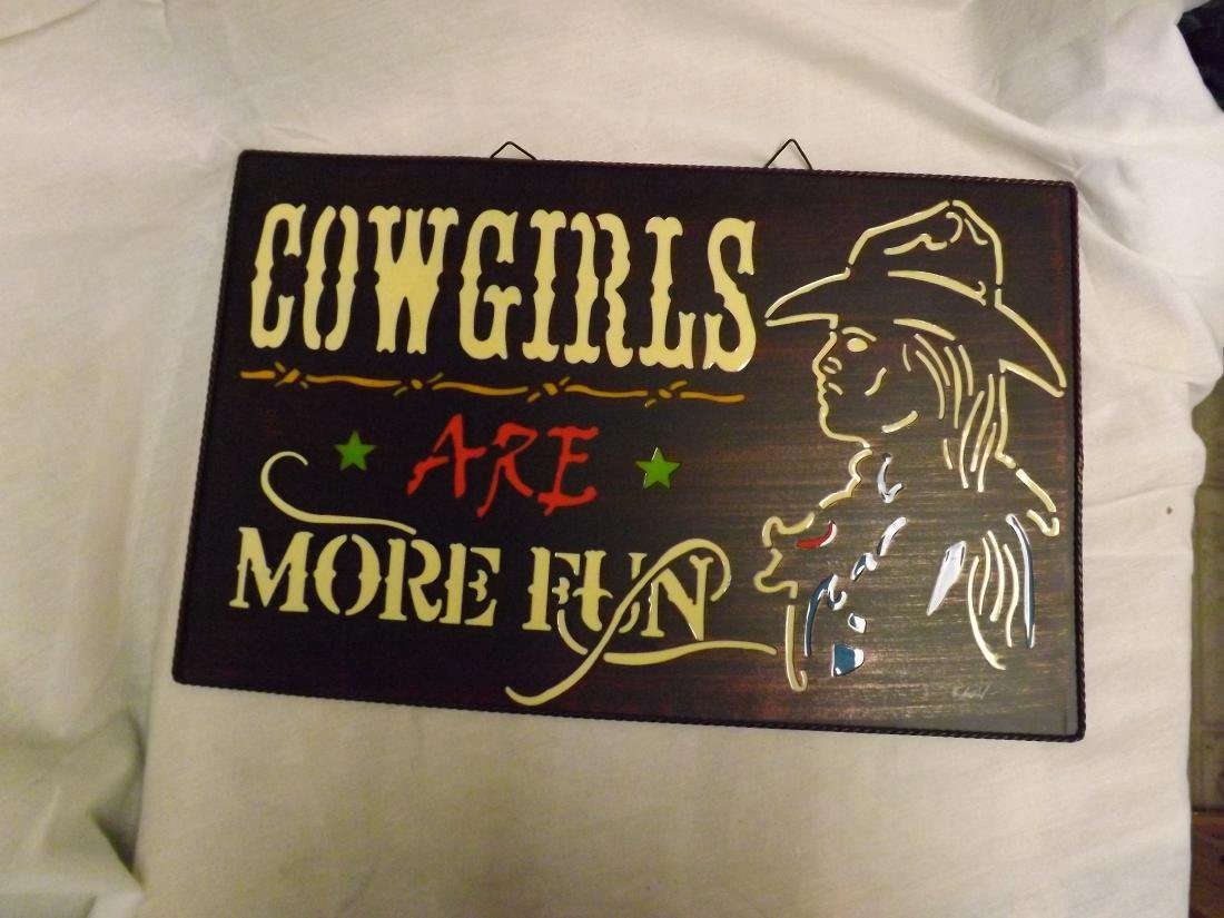 COWGIRLS ARE MORE FUN METAL & ACRYLIC SIGN - 2