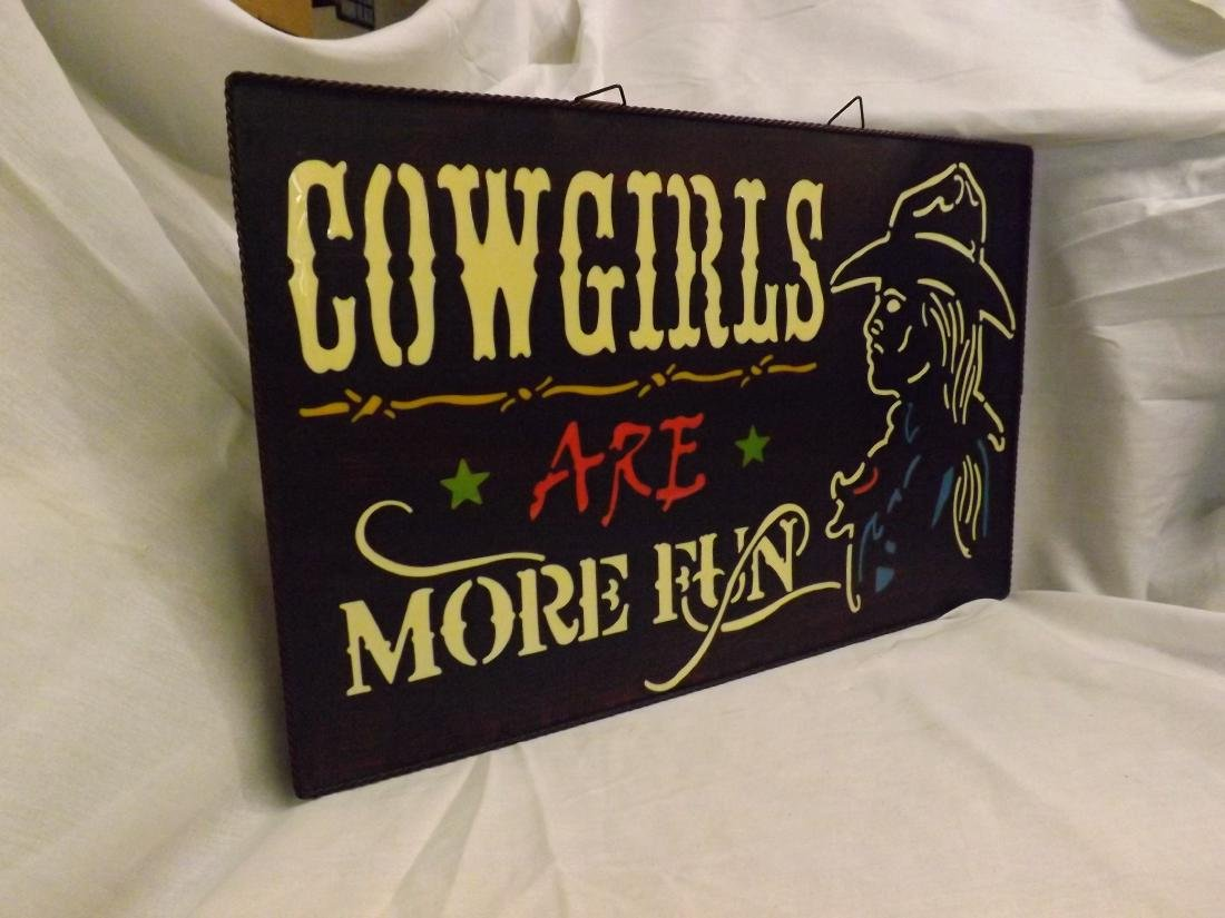 COWGIRLS ARE MORE FUN METAL & ACRYLIC SIGN - 4
