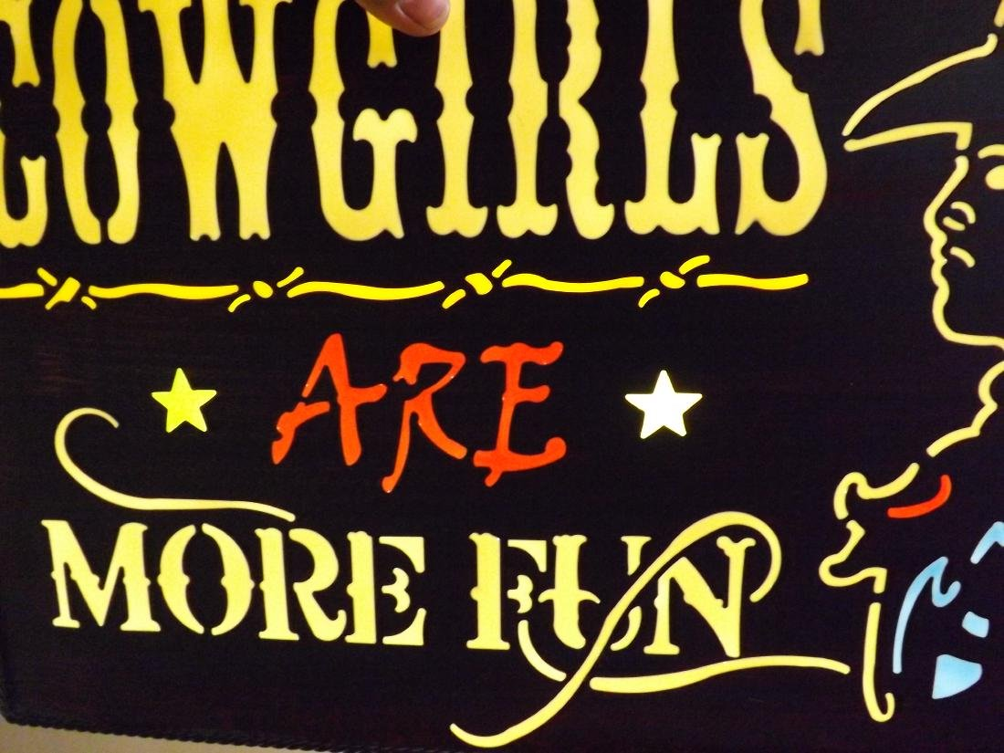 COWGIRLS ARE MORE FUN METAL & ACRYLIC SIGN - 5