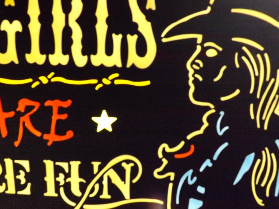 COWGIRLS ARE MORE FUN METAL & ACRYLIC SIGN - 6