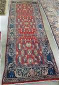 353: PERSIAN RUNNER, northwestern Iran, overall  styliz
