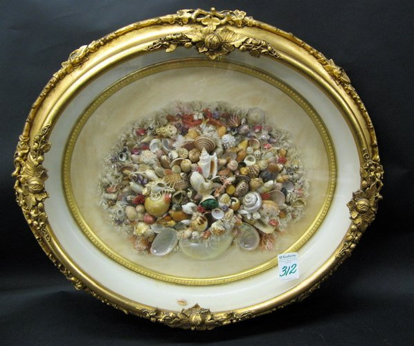 312: SEA SHELLS MOUNTED ON PANEL in gilt wood oval  Vic