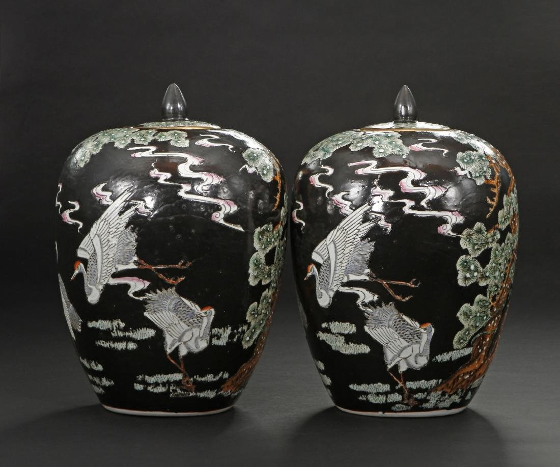 Pair of Famille Noir Ginger Jars and Covers - 3